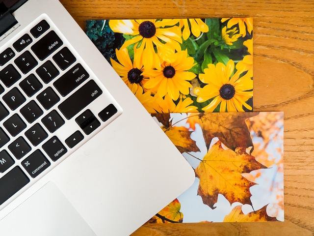 Darmowy program do zmniejszania zdjęć – 5 popularnych